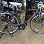 RALEIGH CRN パープル